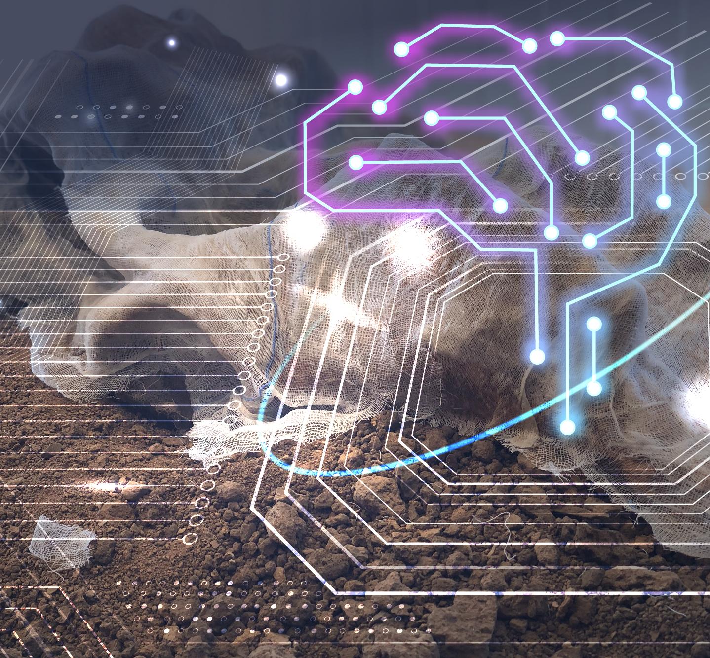 Inteligencia artificial y arqueología